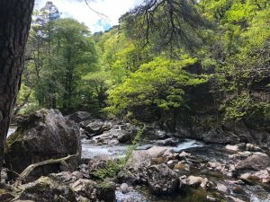 Rocky streams in Snowdonia