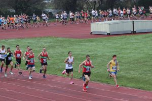 Lead contenders in the Boscombe 10k