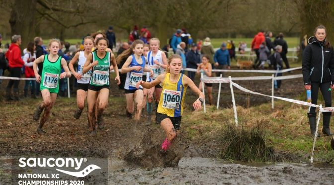 Erin Wells makes a splash in the National Cross Country Championships